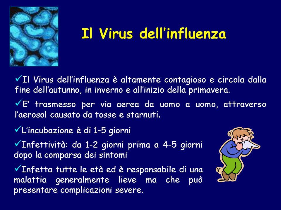 Il Virus dellinfluenza è altamente contagioso e circola dalla fine dellautunno, in inverno e allinizio della primavera. E trasmesso per via aerea da u