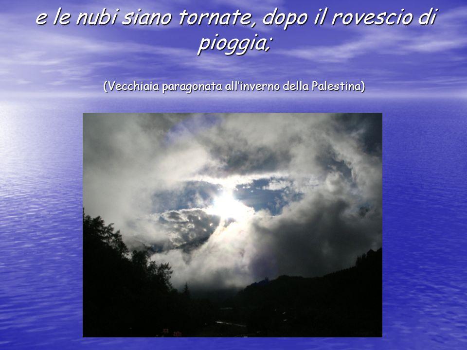 e le nubi siano tornate, dopo il rovescio di pioggia; (Vecchiaia paragonata allinverno della Palestina)