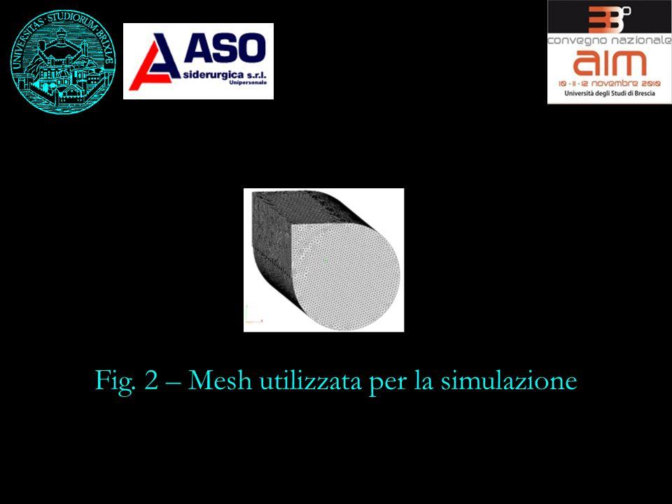 Fig. 2 – Mesh utilizzata per la simulazione