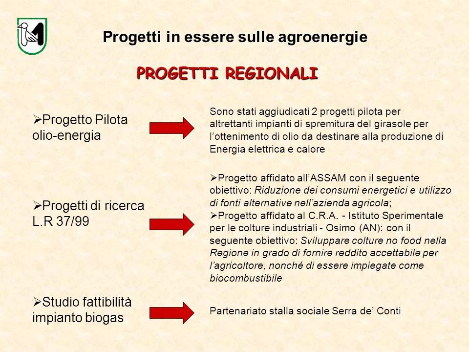 Progetti in essere sulle agroenergie PROGETTI REGIONALI Progetto Pilota olio-energia Sono stati aggiudicati 2 progetti pilota per altrettanti impianti
