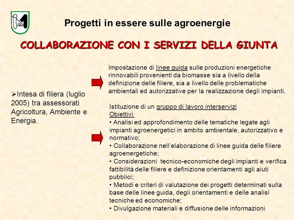 Intesa di filiera (luglio 2005) tra assessorati Agricoltura, Ambiente e Energia. COLLABORAZIONE CON I SERVIZI DELLA GIUNTA Impostazione di linee guida