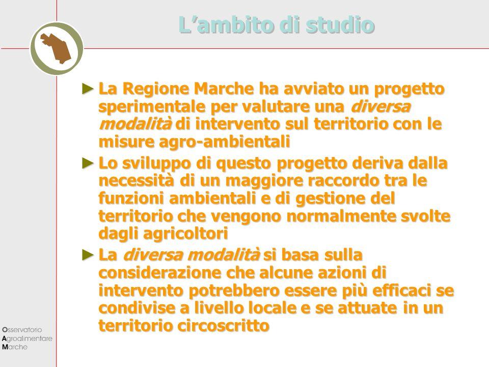Lambito di studio La Regione Marche ha avviato un progetto sperimentale per valutare una diversa modalità di intervento sul territorio con le misure a