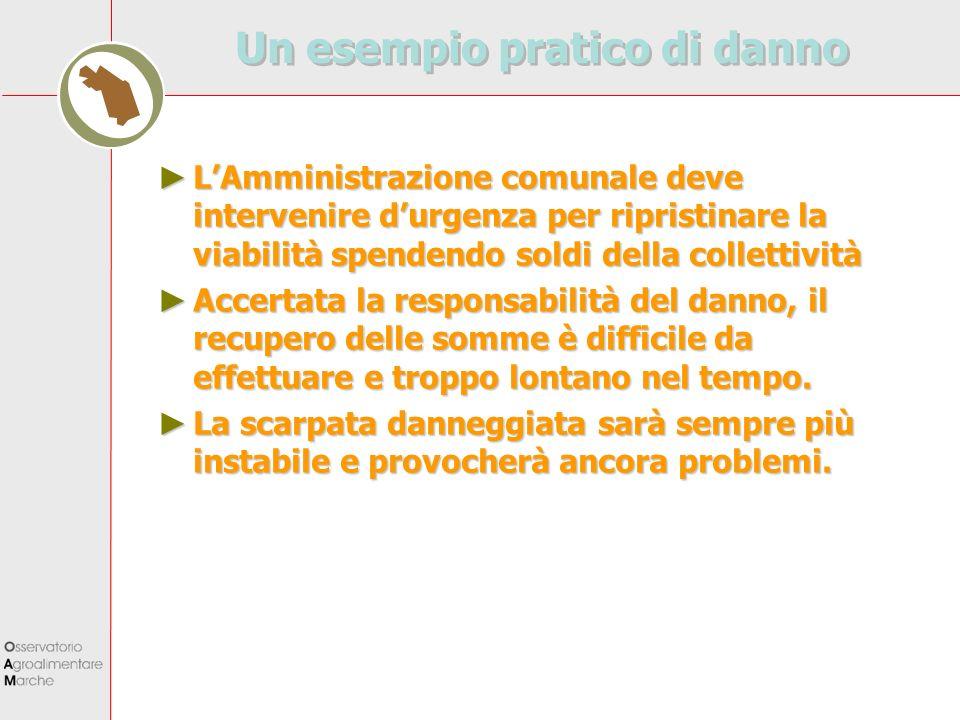 Un esempio pratico di danno LAmministrazione comunale deve intervenire durgenza per ripristinare la viabilità spendendo soldi della collettività LAmmi