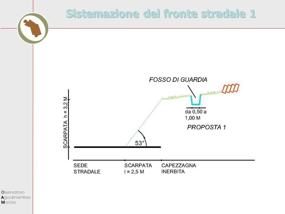 Sistemazione del fronte stradale 1