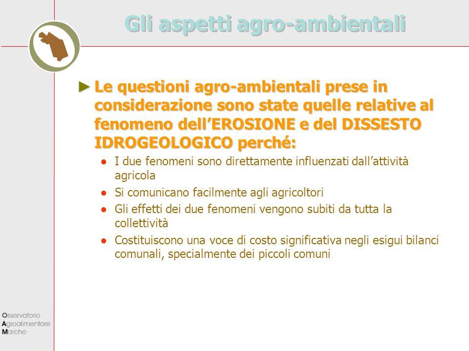 Gli aspetti agro-ambientali Le questioni agro-ambientali prese in considerazione sono state quelle relative al fenomeno dellEROSIONE e del DISSESTO ID