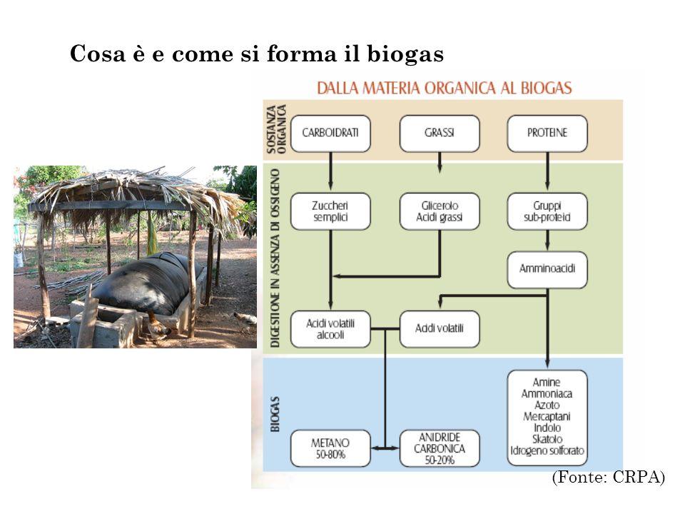 Cosa è e come si forma il biogas (Fonte: CRPA)