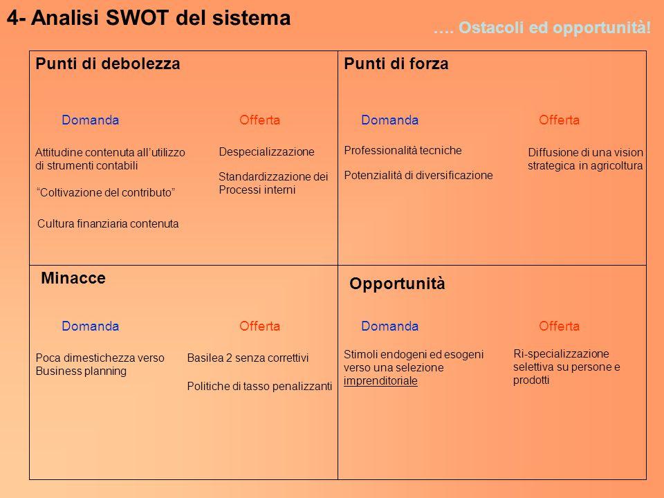 4- Analisi SWOT del sistema …. Ostacoli ed opportunità! Punti di forzaPunti di debolezza Minacce Opportunità DomandaOffertaDomandaOfferta DomandaOffer