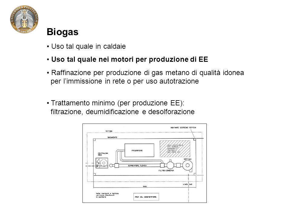 Biogas Uso tal quale in caldaie Uso tal quale nei motori per produzione di EE Raffinazione per produzione di gas metano di qualità idonea per limmissione in rete o per uso autotrazione Trattamento minimo (per produzione EE): filtrazione, deumidificazione e desolforazione