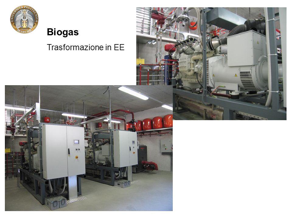 Biogas Trasformazione in EE