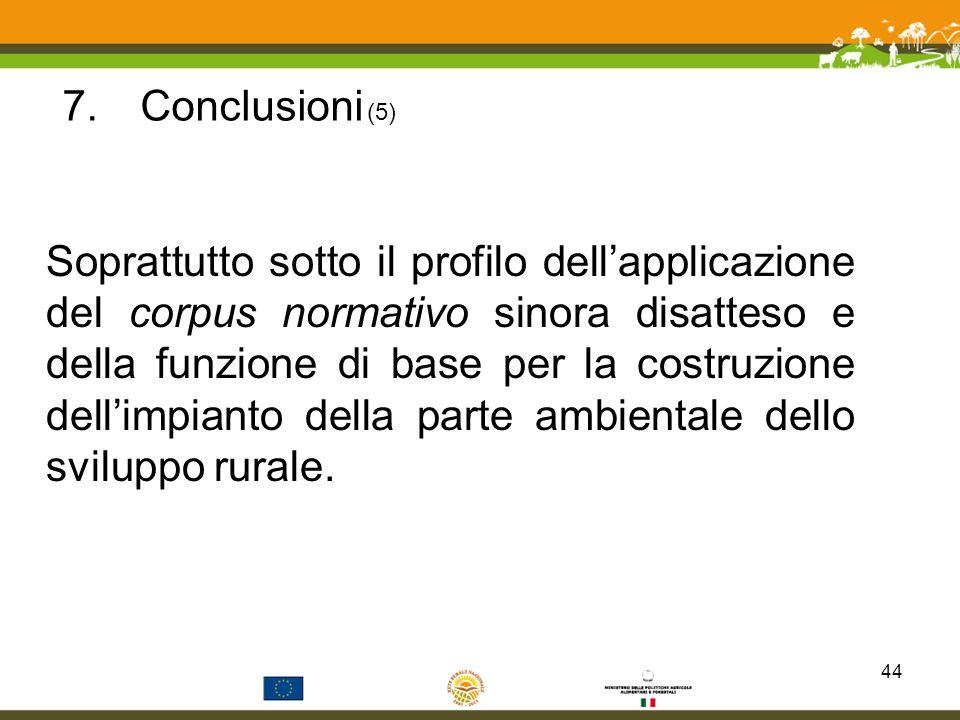 7.Conclusioni (5) Soprattutto sotto il profilo dellapplicazione del corpus normativo sinora disatteso e della funzione di base per la costruzione dell