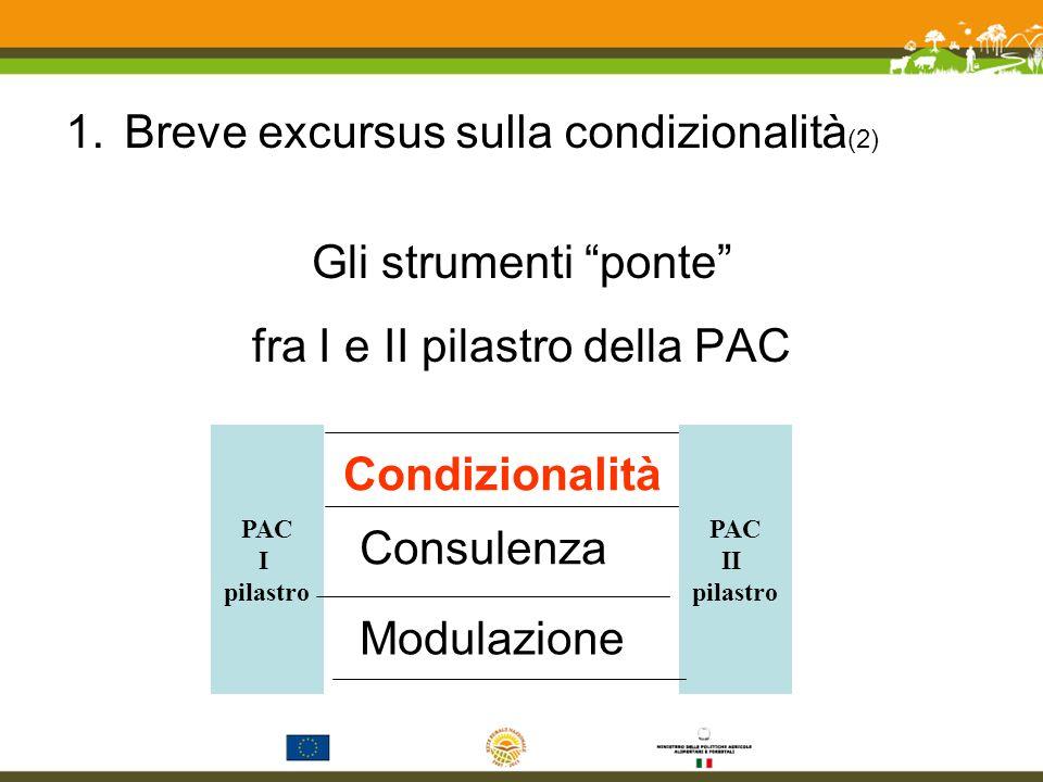 1.Breve excursus sulla condizionalità (3) La condizionalità nasce nel I ° pilastro (Agenda 2000) come ECO- CONDIZIONALITÁ, facoltativa per gli SM, limitata a pochi aspetti ambientali (ad es.: manutenzione dei fossi).