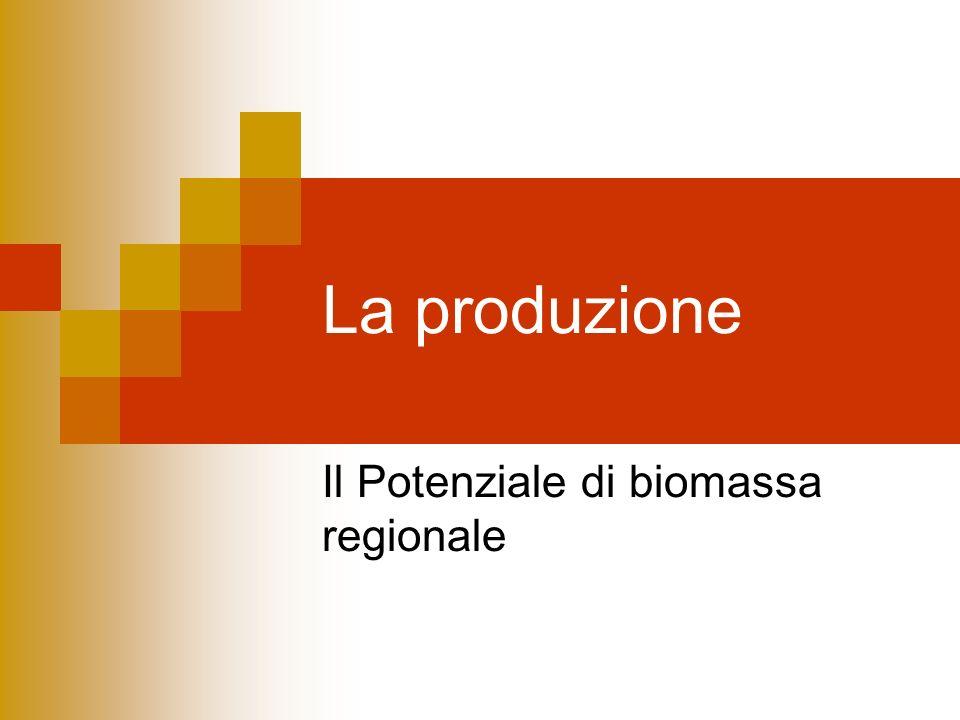 La produzione Il Potenziale di biomassa regionale