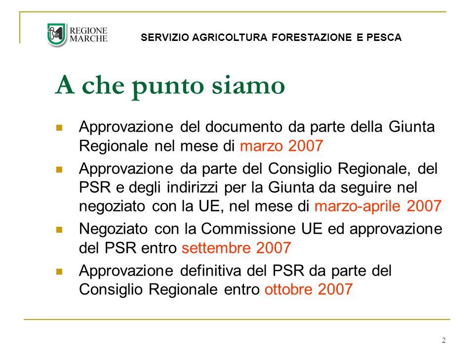 2 Approvazione del documento da parte della Giunta Regionale nel mese di marzo 2007 Approvazione da parte del Consiglio Regionale, del PSR e degli indirizzi per la Giunta da seguire nel negoziato con la UE, nel mese di marzo-aprile 2007 Negoziato con la Commissione UE ed approvazione del PSR entro settembre 2007 Approvazione definitiva del PSR da parte del Consiglio Regionale entro ottobre 2007 A che punto siamo SERVIZIO AGRICOLTURA FORESTAZIONE E PESCA