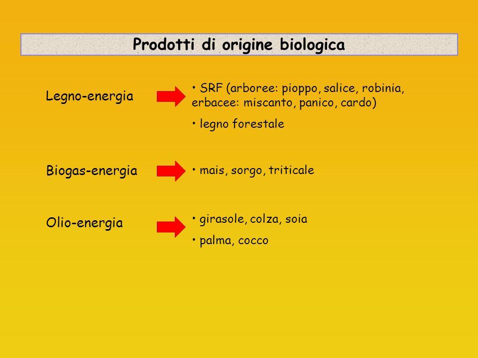 Sottoprodotti di origine biologica 1- sottoprodotti di origine animale non destinati al consumo umano 4 categorie di sottoprodotti IMPORTANZA DEL MIX DI MATRICI PER IL BIOGAS E LE BIOMASSE.