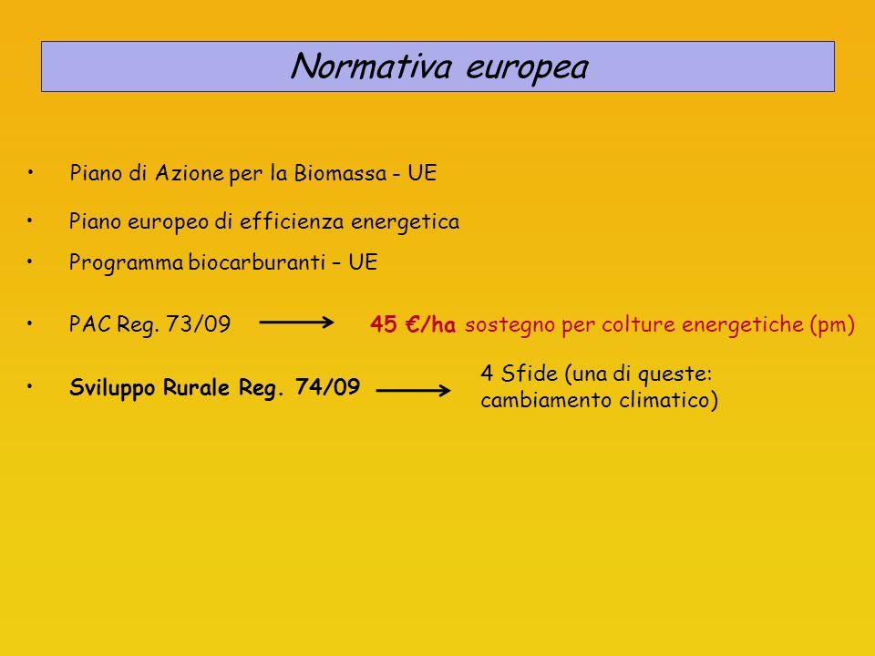 Legge n.81 del 11 marzo 2006 Interventi urgenti per i settori dellagricoltura, dellagroindustria, della pesca, nonché in materia di fiscalità dimpresa Normativa nazionale Dlgs n.128 del 30 maggio 2005 Attuazione della Dir 2003/30/CE relativa alla promozione biocarburanti nel settore dei trasporti Dlgs n.387 del 29 dicembre 2003: Recepimento della Dir 2001/77/CE Dlgs n.20 del 08 febbraio 2007 Attuazione della Dir 2004/08/CE DL n.