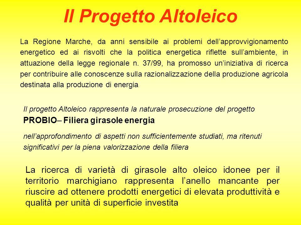 Il Progetto Altoleico La Regione Marche, da anni sensibile ai problemi dellapprovvigionamento energetico ed ai risvolti che la politica energetica rif