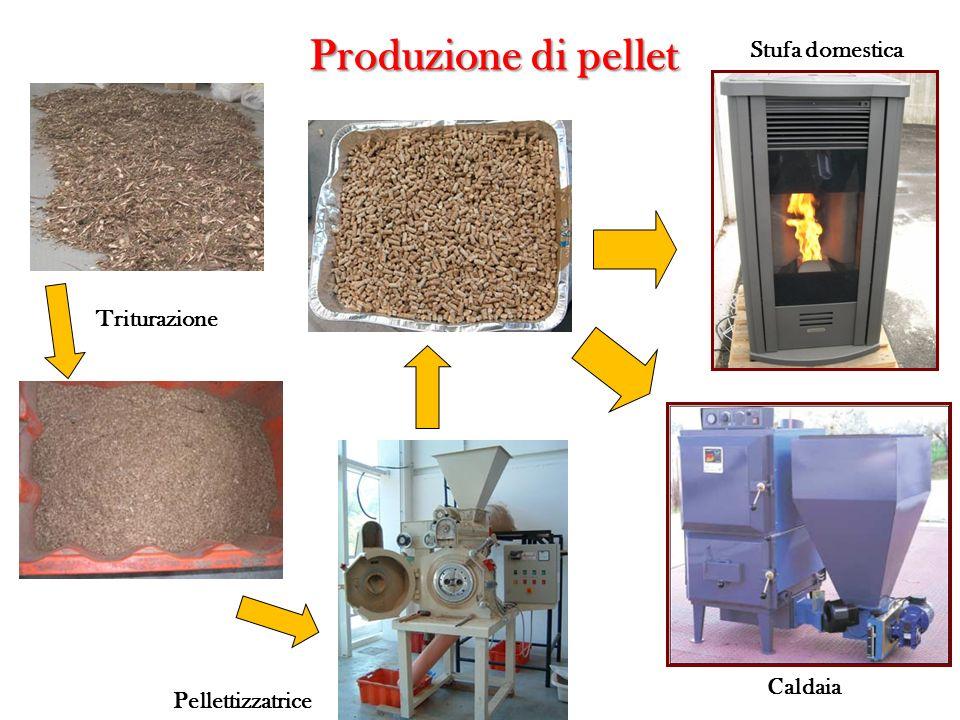 Produzione di pellet Triturazione Pellettizzatrice Stufa domestica Caldaia