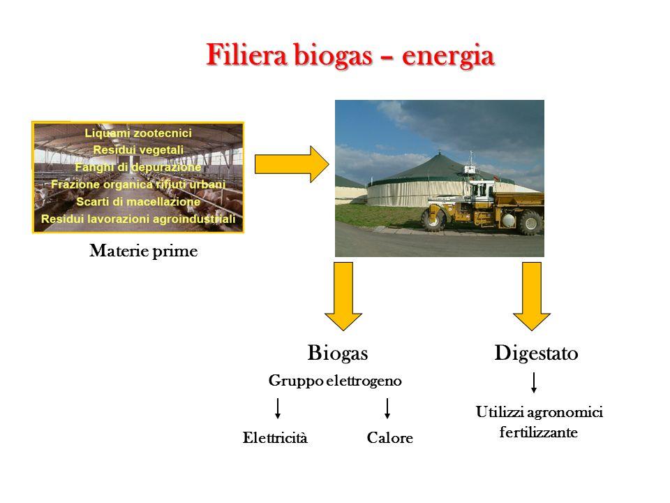 Filiera biogas – energia Materie prime Gruppo elettrogeno Elettricità DigestatoBiogas Calore Utilizzi agronomici fertilizzante