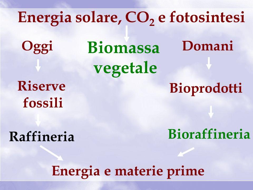 Energia solare, CO 2 e fotosintesi Biomassa vegetale Energia e materie prime Oggi Riserve fossili Raffineria Domani Bioprodotti Bioraffineria