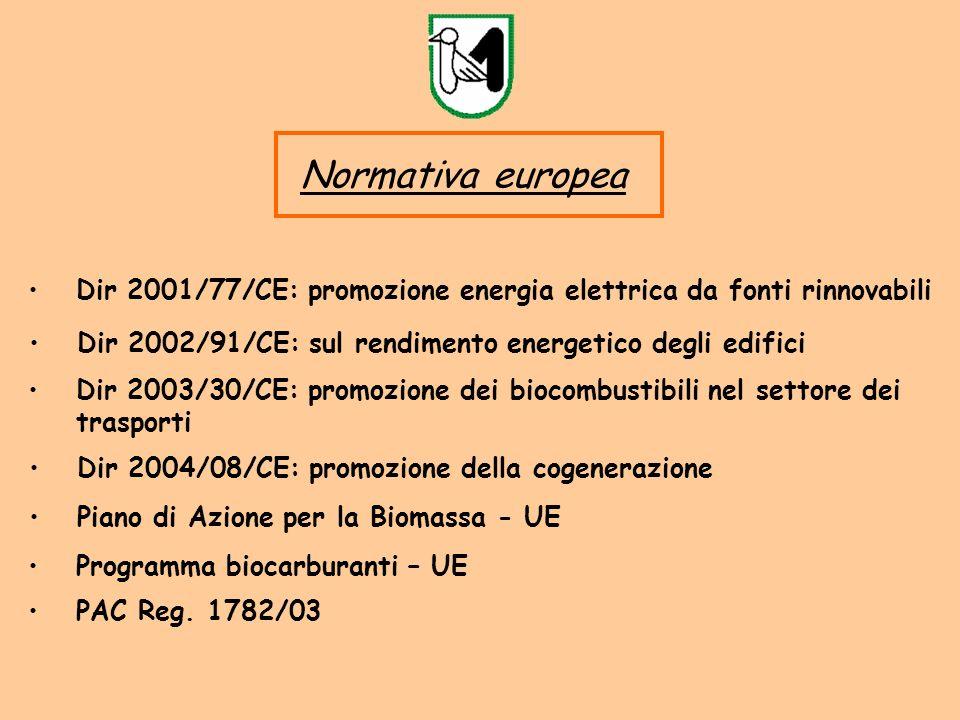 Dir 2002/91/CE: sul rendimento energetico degli edifici Normativa europea Dir 2001/77/CE: promozione energia elettrica da fonti rinnovabili Dir 2003/30/CE: promozione dei biocombustibili nel settore dei trasporti Dir 2004/08/CE: promozione della cogenerazione Piano di Azione per la Biomassa - UE Programma biocarburanti – UE PAC Reg.