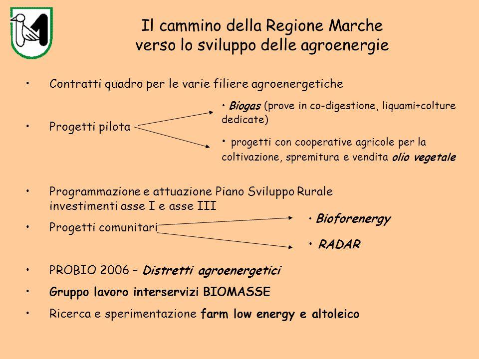 Filiere possibili nella Regione Marche Filiere centrate sullazienda agricola o sue aggregazioni A.1 - Filiera legno-energia per la produzione di calore con caldaie di piccole/medie dimensioni; A.2 - Filiera legno - energia per la produzione di biocombustibili (pellet); A.3 - Filiera olio-energia di piccole/medie dimensioni per la produzione di biocombustibili (olio) o elettricità e/o calore; A.4 - Filiera del biogas per la produzione di elettricità e/o calore.