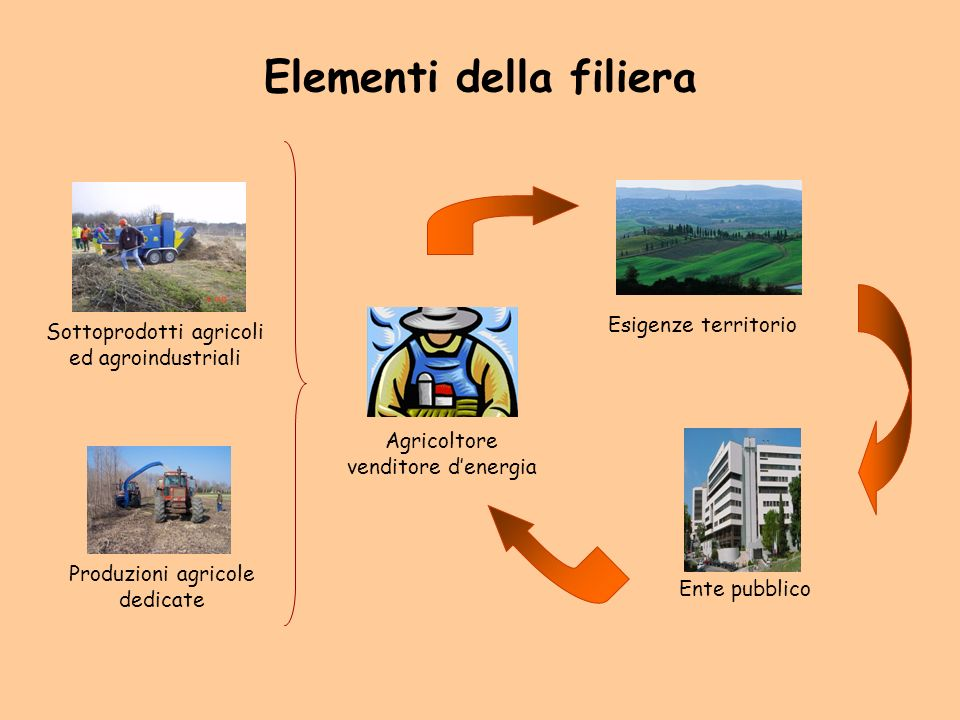 Elementi della filiera Agricoltore venditore denergia Produzioni agricole dedicate Sottoprodotti agricoli ed agroindustriali Ente pubblico Esigenze territorio