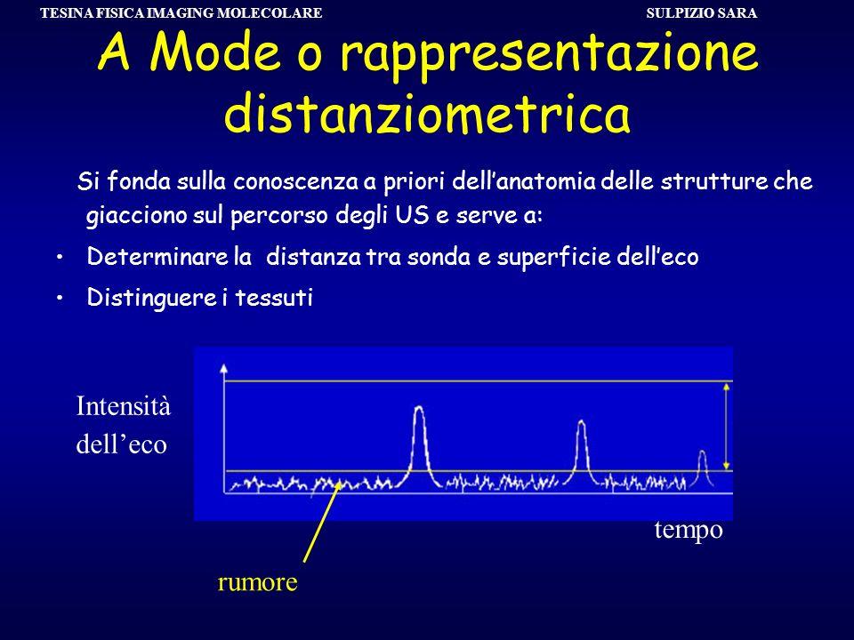 SULPIZIO SARA TESINA FISICA IMAGING MOLECOLARE A Mode o rappresentazione distanziometrica Si fonda sulla conoscenza a priori dellanatomia delle strutt