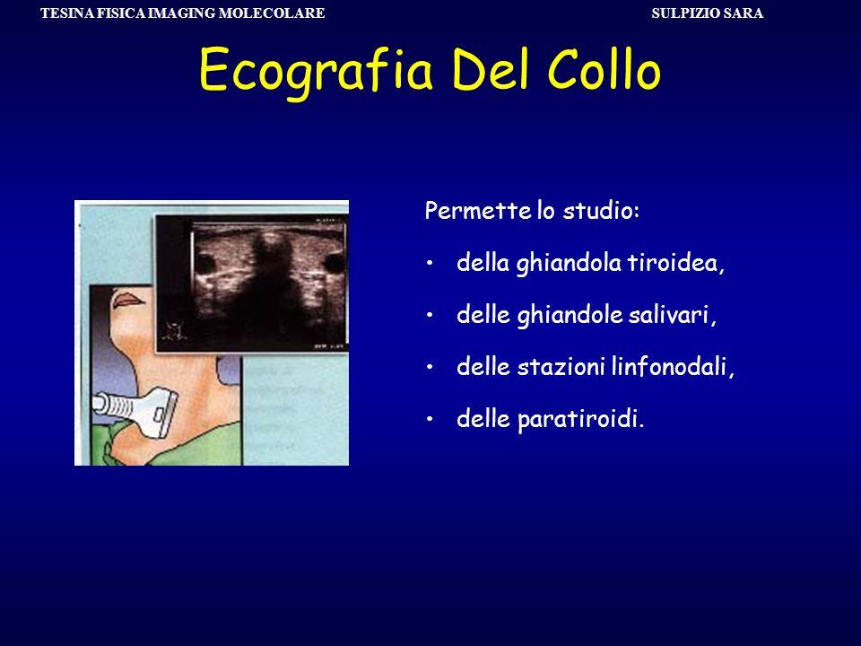 SULPIZIO SARA TESINA FISICA IMAGING MOLECOLARE Ecografia Del Collo Permette lo studio: della ghiandola tiroidea, delle ghiandole salivari, delle stazi