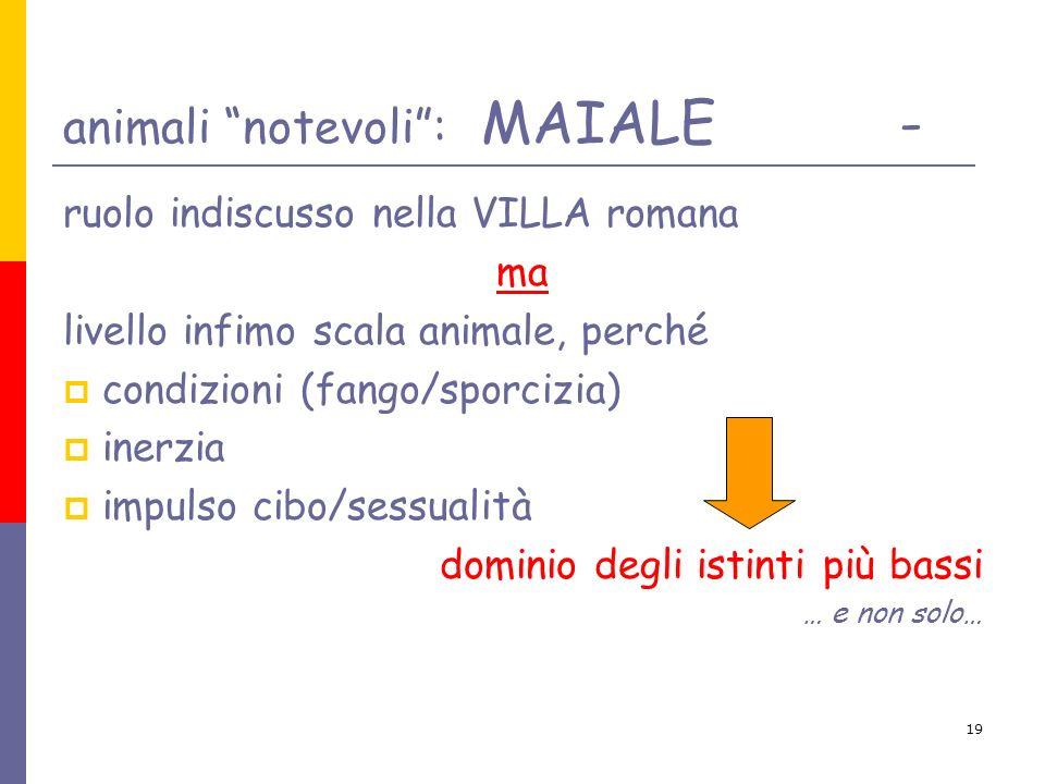 19 animali notevoli: MAIALE- ruolo indiscusso nella VILLA romana ma livello infimo scala animale, perché condizioni (fango/sporcizia) inerzia impulso