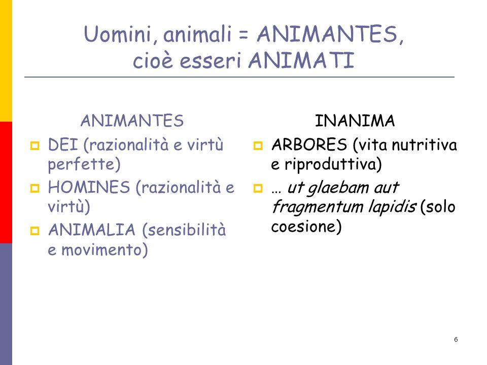 6 Uomini, animali = ANIMANTES, cioè esseri ANIMATI ANIMANTES DEI (razionalità e virtù perfette) HOMINES (razionalità e virtù) ANIMALIA (sensibilità e