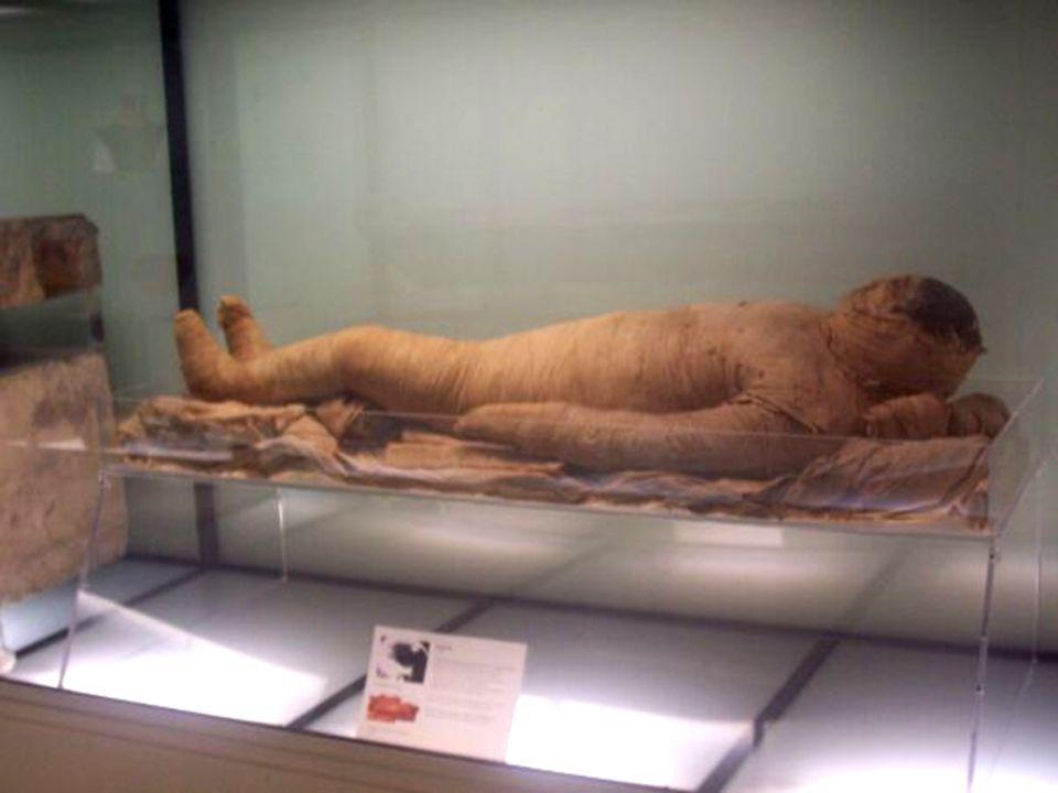 Atti di culto: sarcofagi Atti di culto: CULTO DEI MORTI ( piramidi, sarcofagi, mummificazione, libro dei morti, corredo funebre) templi, miti
