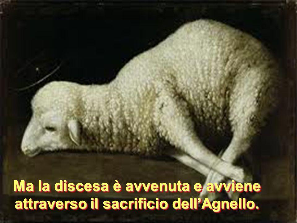 Ma la discesa è avvenuta e avviene attraverso il sacrificio dellAgnello.