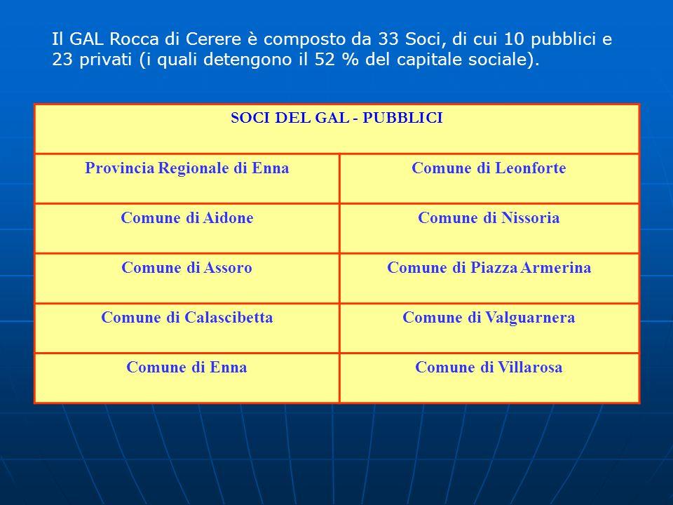 Il GAL Rocca di Cerere è composto da 33 Soci, di cui 10 pubblici e 23 privati (i quali detengono il 52 % del capitale sociale). SOCI DEL GAL - PUBBLIC