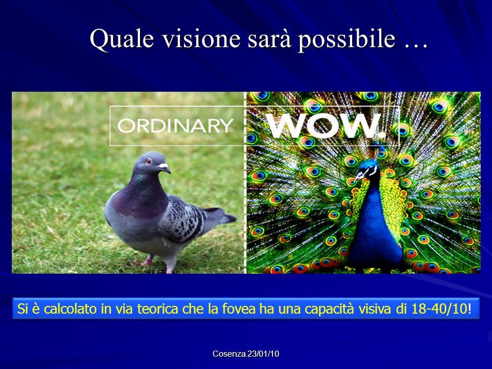 Cosenza 23/01/10 Quale visione sarà possibile … Quale visione sarà possibile … Si è calcolato in via teorica che la fovea ha una capacità visiva di 18