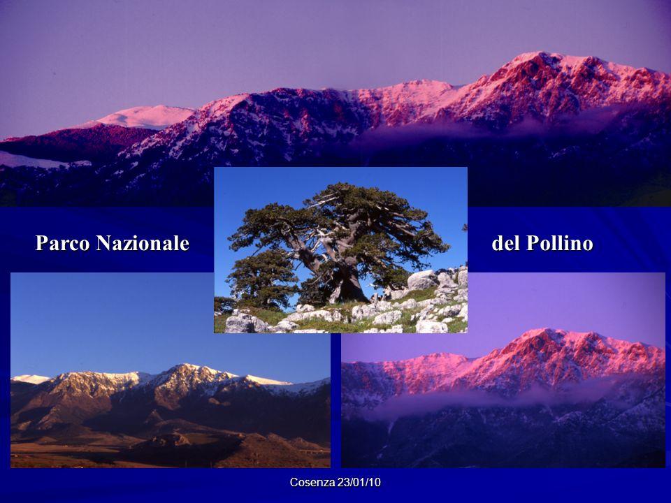 Cosenza 23/01/10 Parco Nazionale del Pollino