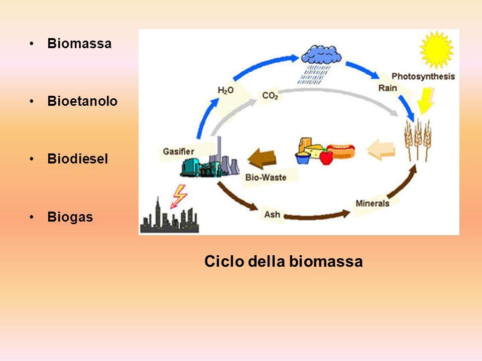 Biomassa Bioetanolo Biodiesel Biogas Ciclo della biomassa