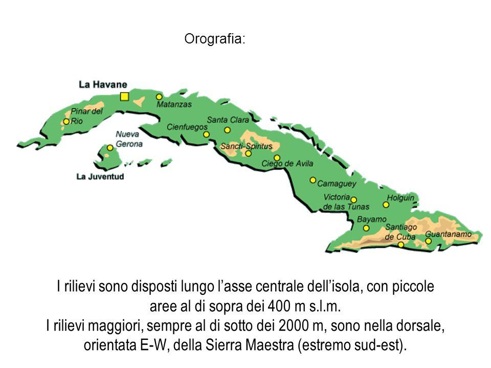 I rilievi sono disposti lungo lasse centrale dellisola, con piccole aree al di sopra dei 400 m s.l.m. I rilievi maggiori, sempre al di sotto dei 2000