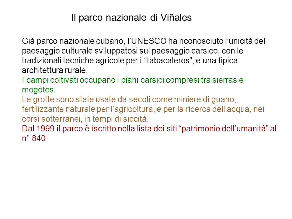 Il parco nazionale di Viñales Già parco nazionale cubano, lUNESCO ha riconosciuto lunicità del paesaggio culturale sviluppatosi sul paesaggio carsico,