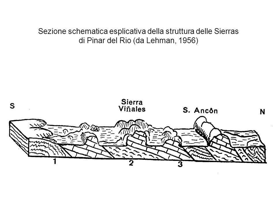 Sezione schematica esplicativa della struttura delle Sierras di Pinar del Rio (da Lehman, 1956)