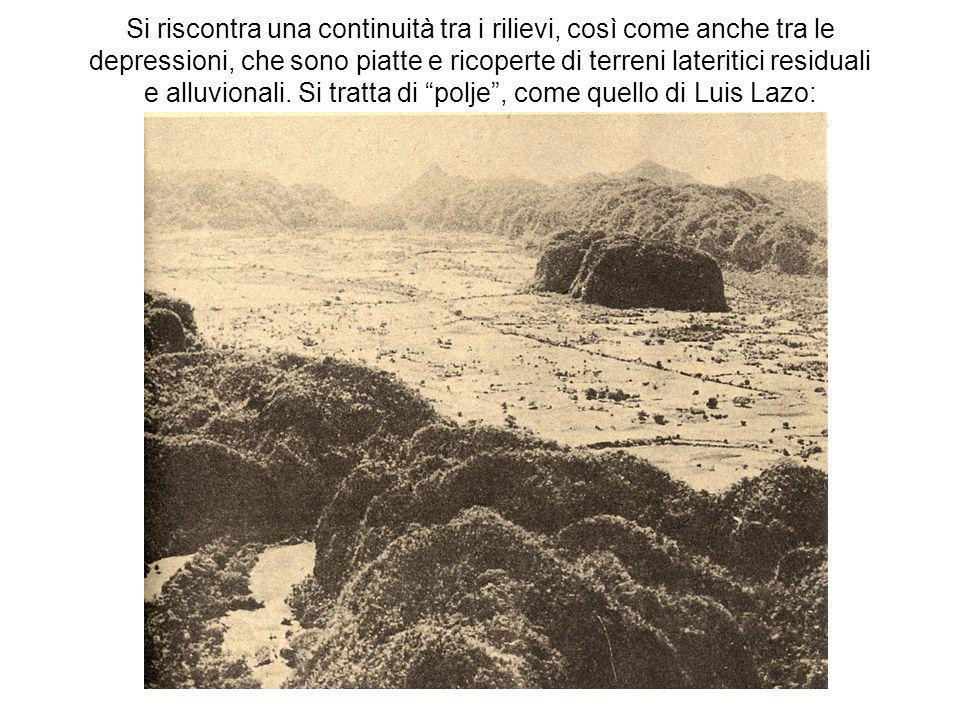 Si riscontra una continuità tra i rilievi, così come anche tra le depressioni, che sono piatte e ricoperte di terreni lateritici residuali e alluviona