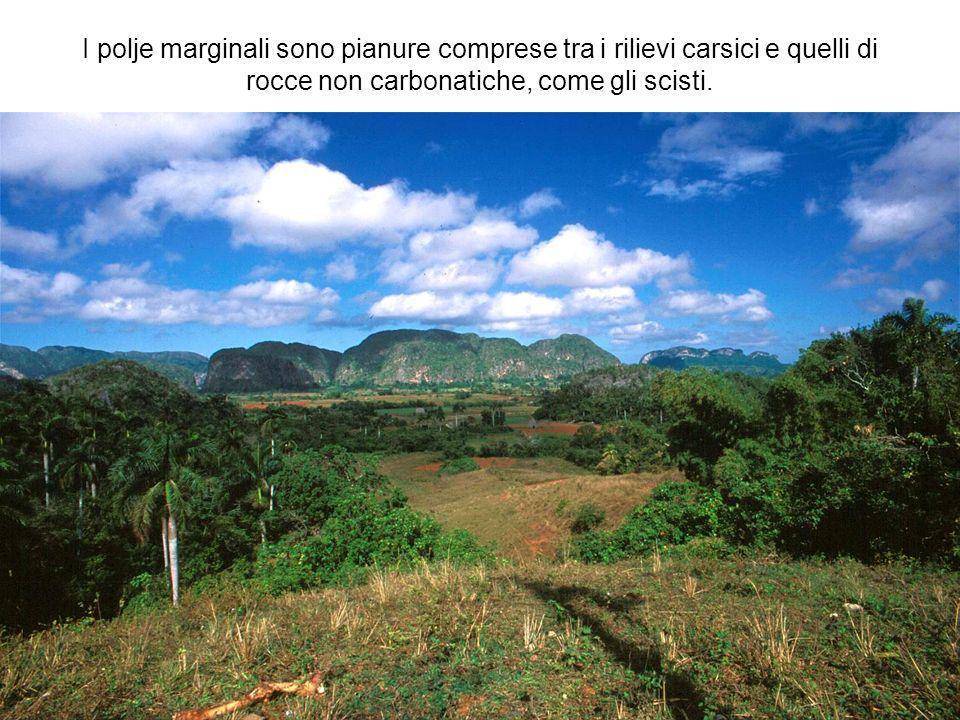 I polje marginali sono pianure comprese tra i rilievi carsici e quelli di rocce non carbonatiche, come gli scisti.
