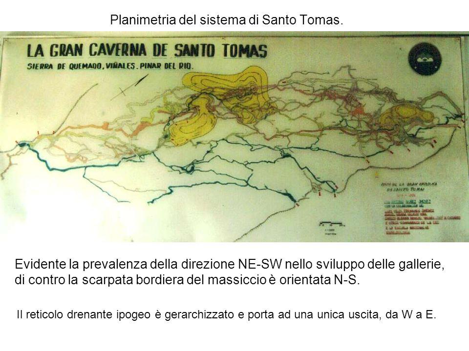 Planimetria del sistema di Santo Tomas. Il reticolo drenante ipogeo è gerarchizzato e porta ad una unica uscita, da W a E. Evidente la prevalenza dell