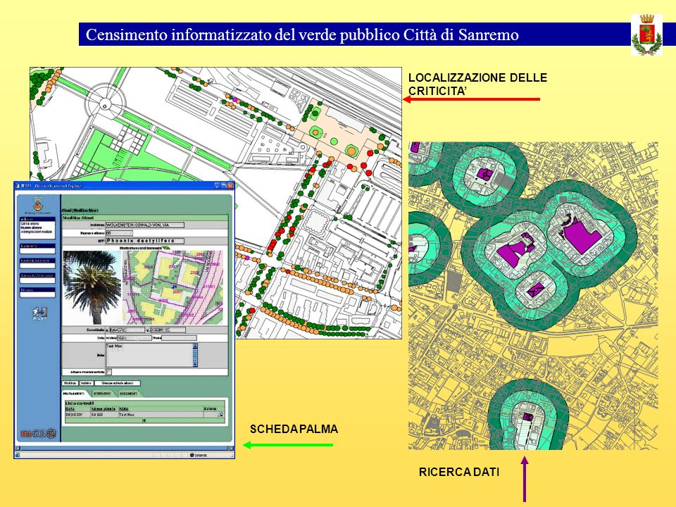 Censimento informatizzato del verde pubblico Città di Sanremo LOCALIZZAZIONE DELLE CRITICITA SCHEDA PALMA RICERCA DATI