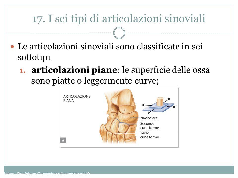 17. I sei tipi di articolazioni sinoviali Le articolazioni sinoviali sono classificate in sei sottotipi 1. articolazioni piane: le superficie delle os