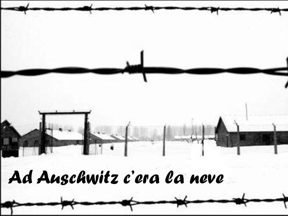 Ad Auschwitz cera la neve