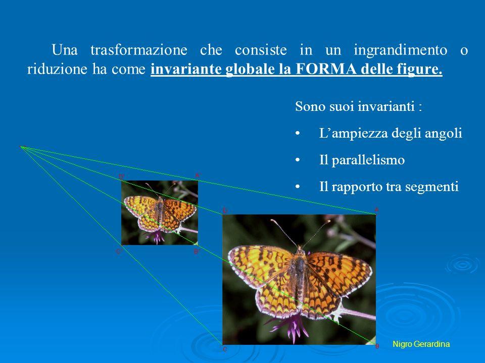 Nigro Gerardina Una trasformazione che consiste in un ingrandimento o riduzione ha come invariante globale la FORMA delle figure. Sono suoi invarianti