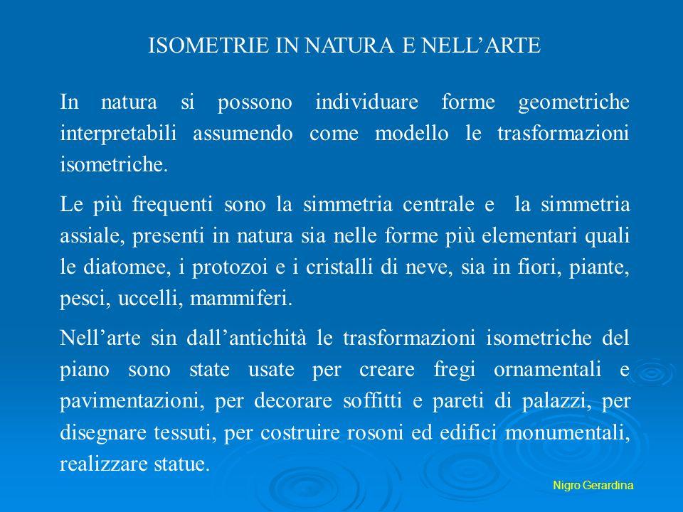 Nigro Gerardina ISOMETRIE IN NATURA E NELLARTE In natura si possono individuare forme geometriche interpretabili assumendo come modello le trasformazi