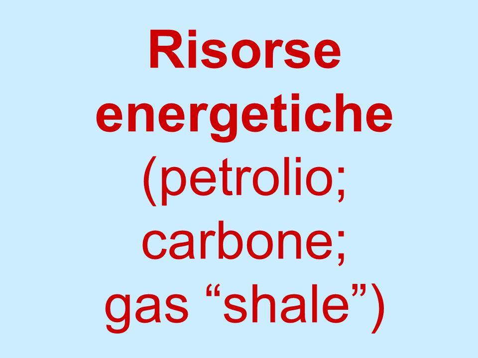 Risorse energetiche (petrolio; carbone; gas shale)