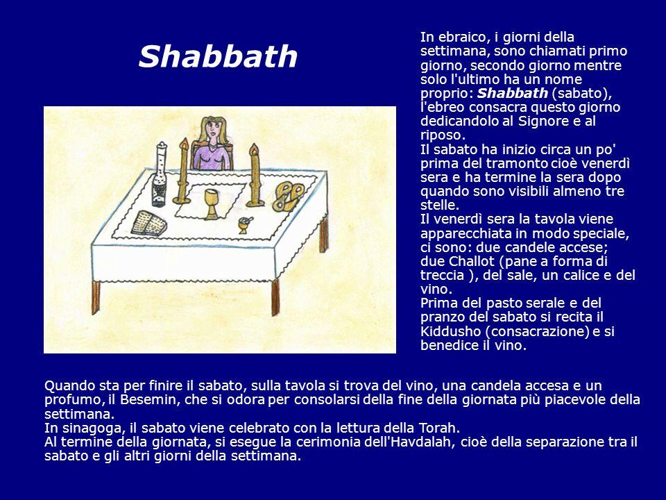 Shabbath In ebraico, i giorni della settimana, sono chiamati primo giorno, secondo giorno mentre solo l'ultimo ha un nome proprio: Shabbath (sabato),