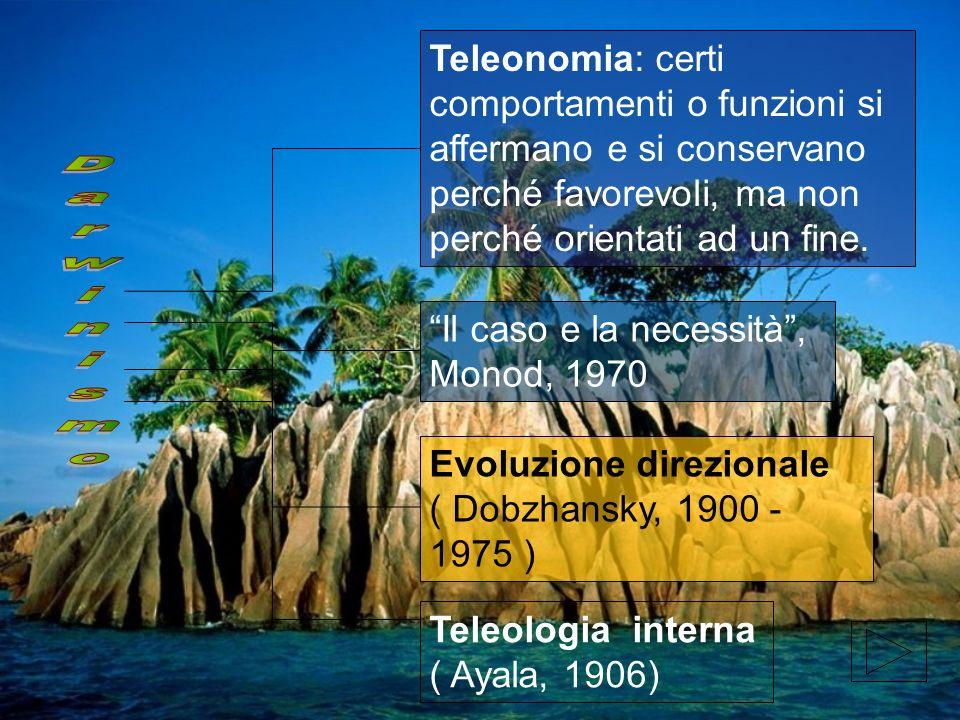 Evoluzione direzionale ( Dobzhansky, 1900 - 1975 ) Il caso e la necessità, Monod, 1970 Teleonomia: certi comportamenti o funzioni si affermano e si co